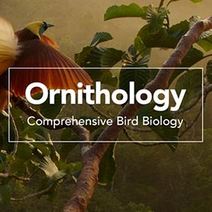 Ornithology Comprehensive Bird Biology Course Image