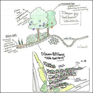 Dilmun Hill Food Forest permaculture plans