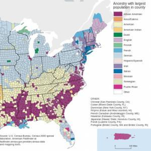 A map showing distribution of ancestry in the Eastern United States